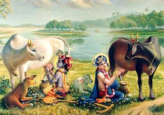 Lord krishn and his Brother Balram getting Milk From Sacred Cows