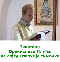 Моји текстови на сајту Епархије тимочке