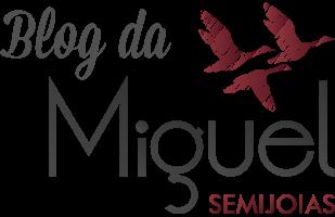 Blog da Miguel Semijoias