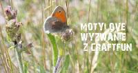 http://craftfunsklep.blogspot.ie/2015/04/motylove-wyzwanie-37.html