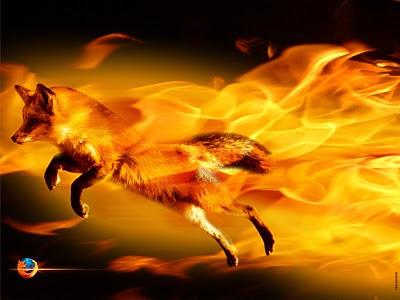 http://2.bp.blogspot.com/-ttDZ2IBt6xQ/TV2jx5_7xmI/AAAAAAAAADU/O-26xx8LVVU/s1600/Firefox.jpg