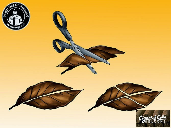 how to cut a cigar with scissors