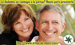 http://www.arbol-de-neem.com/