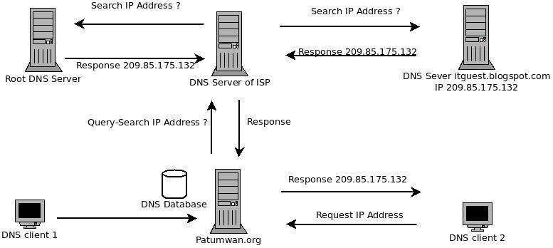 install dns server for ubuntu 10 10