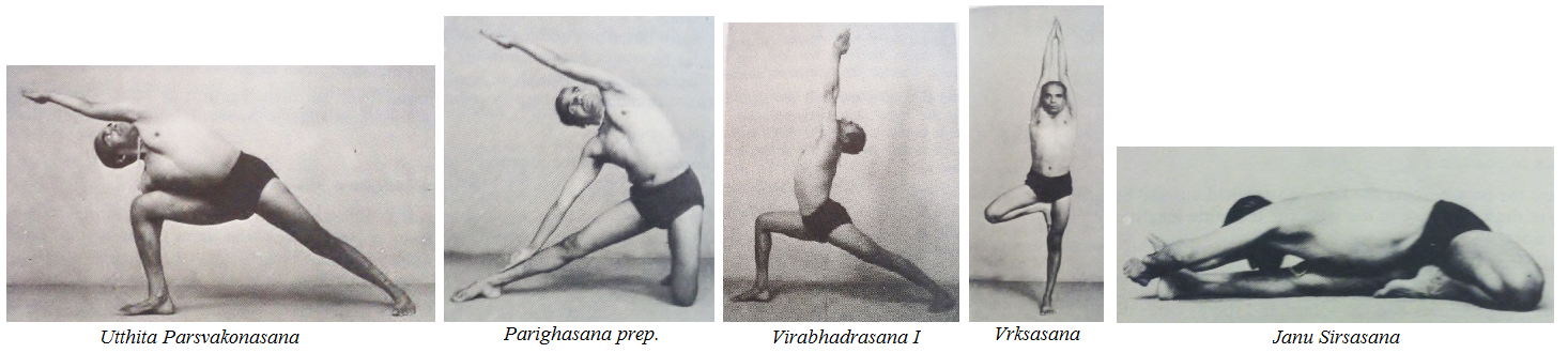light on yoga bks iyengar pdf