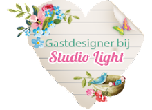 was Gastdesigner bij Studio Light