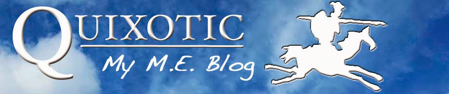 Quixotic: My M.E. Blog