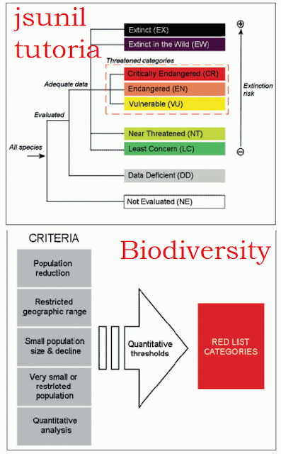 why preserve biodiversity Usaid's biodiversity policy describes the agency's commitment and approach to conserving species and ecosystems, and our focus on integrating biodiversity with other sectors for improved conservation and development outcomes usaid invests about $250 million each year to conserve biodiversity in.