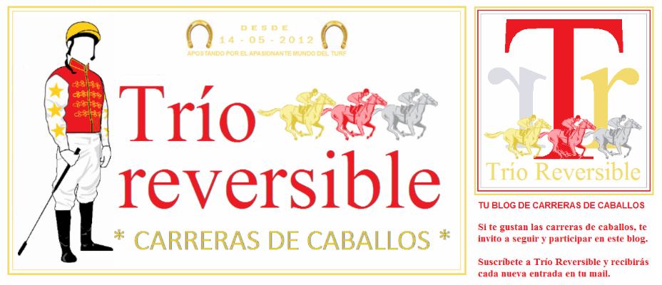 Trío Reversible