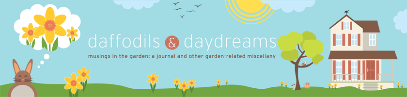 Daffodils & Daydreams