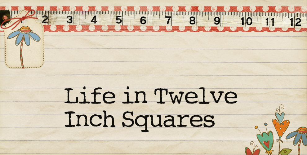 Life in Twelve Square Inches