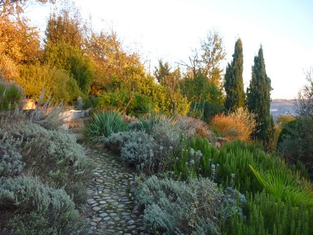 Il giardino gaudente giardino mediterraneo in autunno - Giardino mediterraneo ...