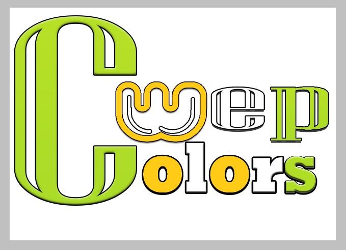 design-logo0