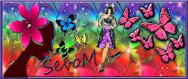 Blogger/ SevoM