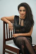 Vriti Khanna sizzling photos gallery-thumbnail-4