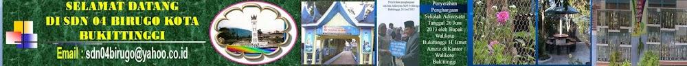 SDN 04 Birugo Bukittinggi