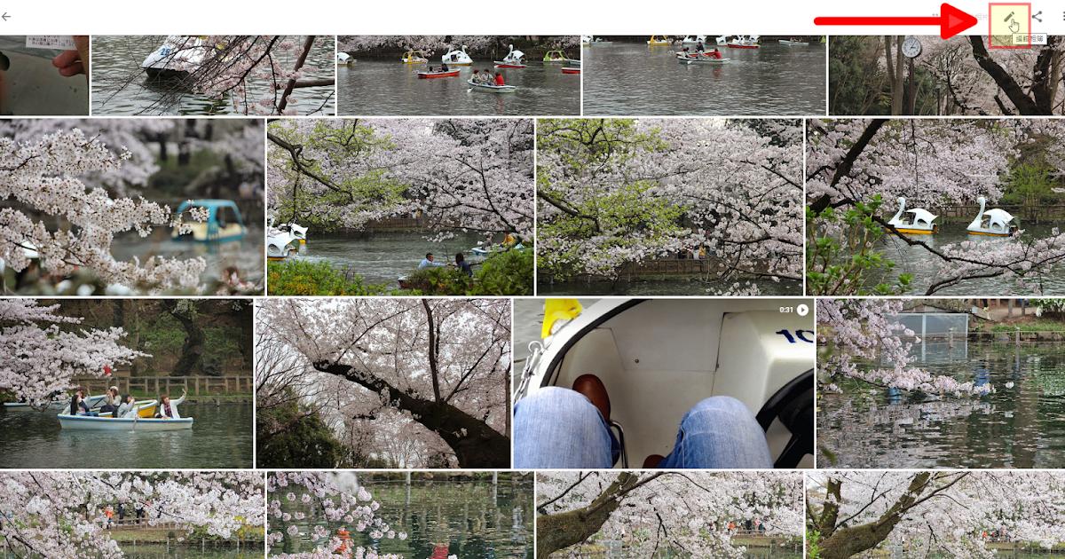 Google 相簿四個新整理功能:可以手動排序照片了!