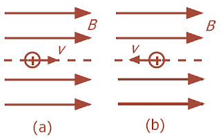 Lintasan partikel yang bergerak sejajar dengan garis medan magnet (a) searah (b) berlawanan arah