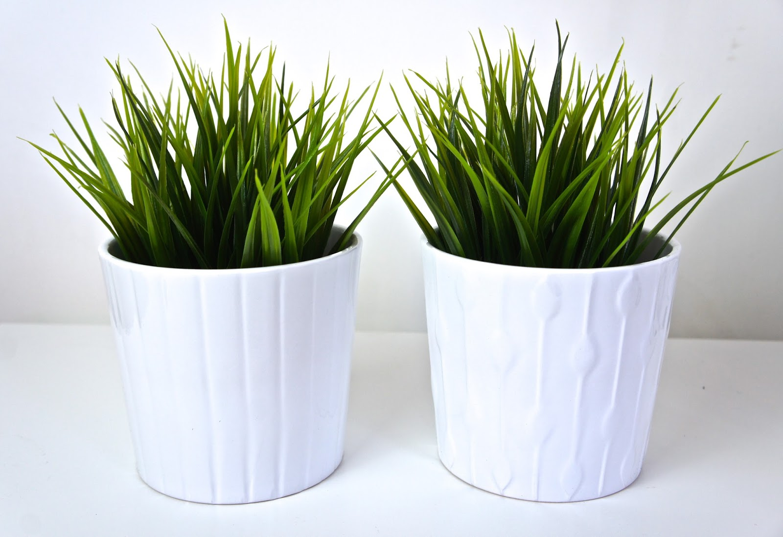 Plant Bamboo Vase Lifestyle Homeware Greenery Home