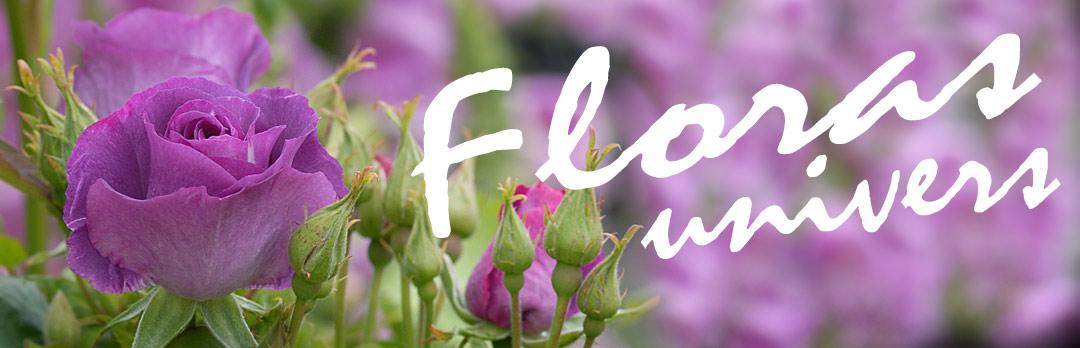 Floras Univers