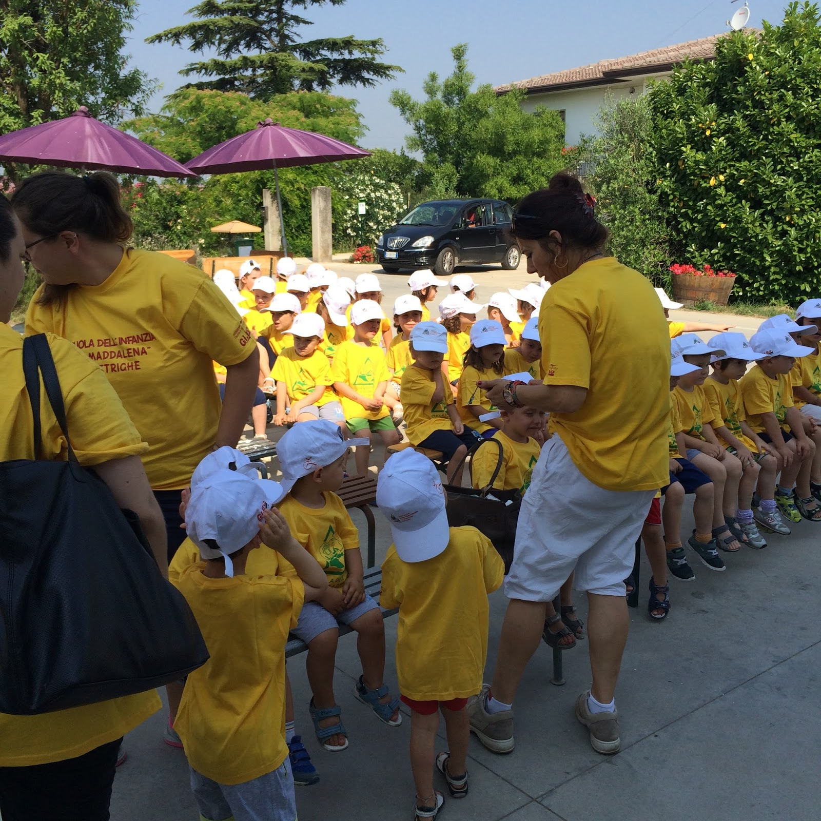 Scuola dell 39 infanzia u maddalena visita in fattoria la for Piani di fattoria georgia