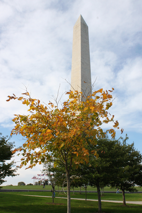 Washington Monument in the fall