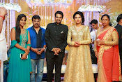 Amala paul vijay reception-thumbnail-22