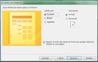 Crear informes access asistente