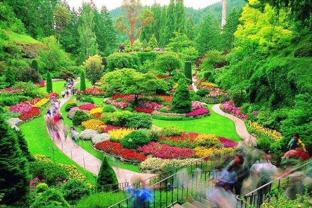 Kumpulan Gambar Taman Bunga yang Indah dan Inspiratif