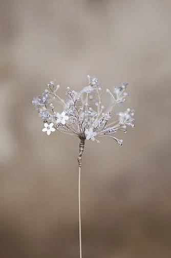 kwiaty artystyczne