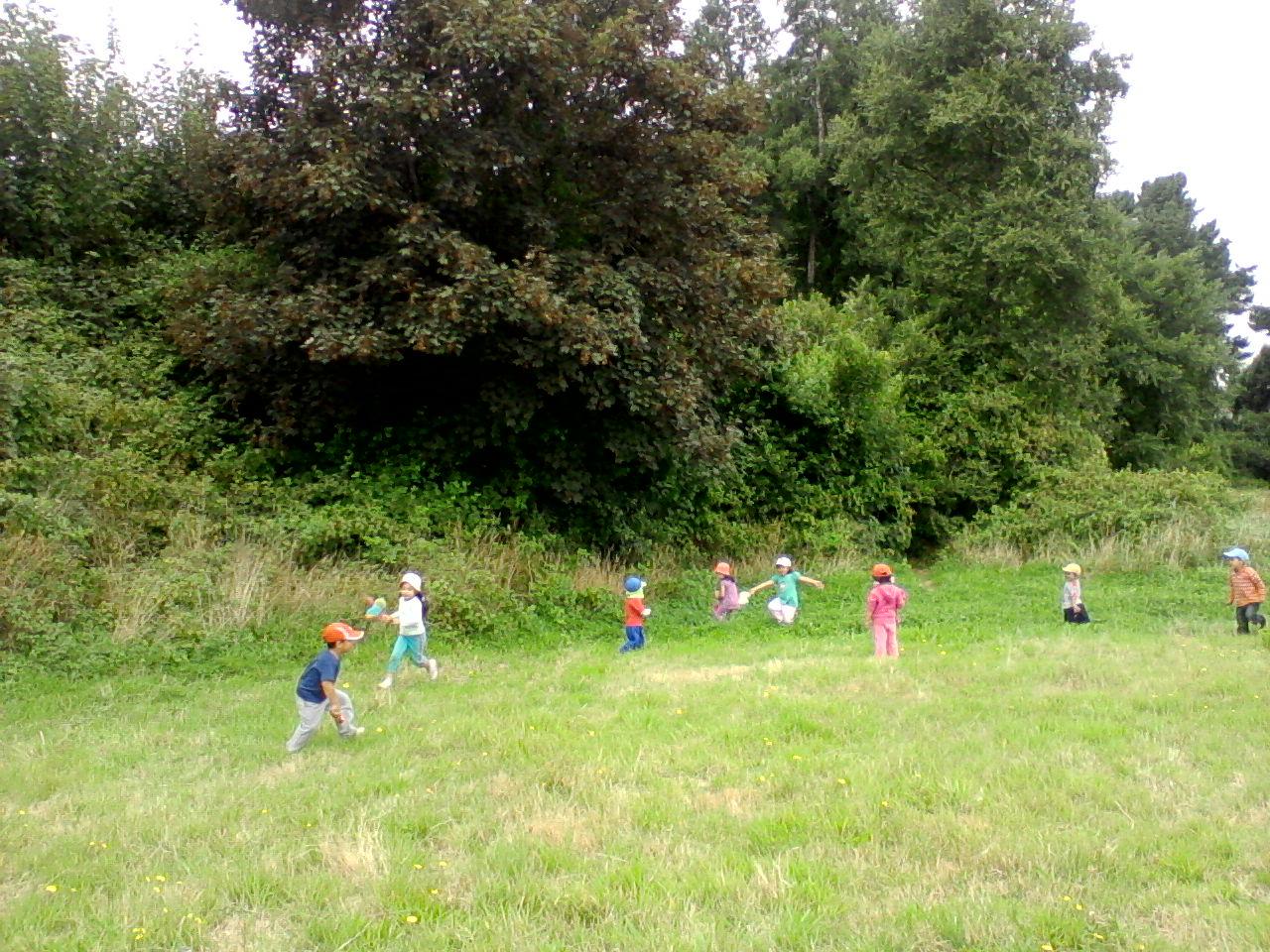 Jardin infantil caracolito se va el verano 2011 for Jardin infantil verano 2016