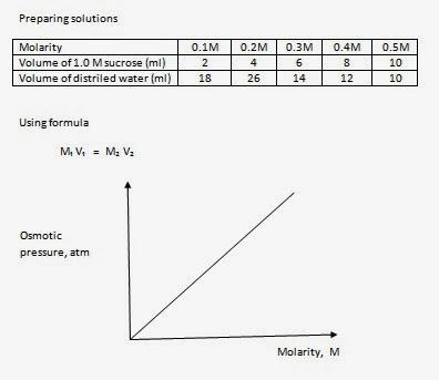 transport across membrane experiment