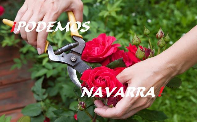 ¡Podemos Navarra!