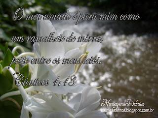 http://www.facebook.com/msgdiarias
