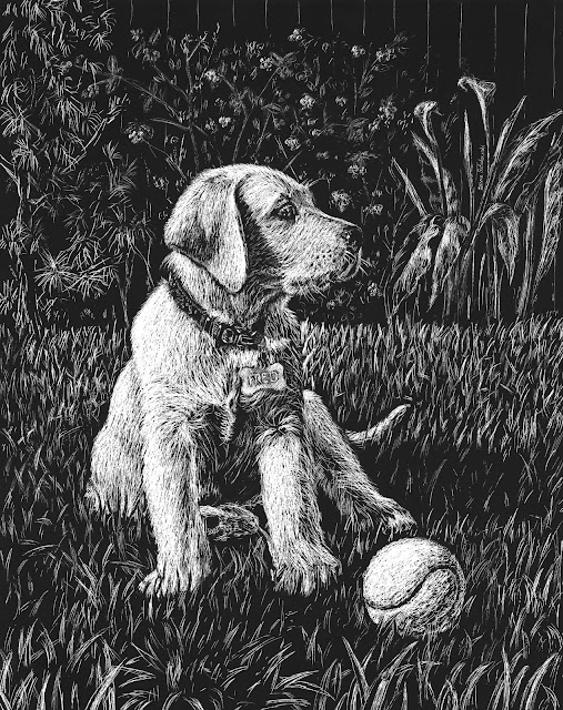 Scratch Board dog portrait