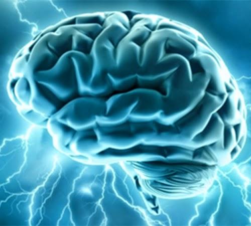 Nutrisi Kunci Untuk Menjaga Kemampuan Otak