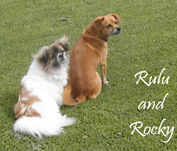 Rocky and Rulu