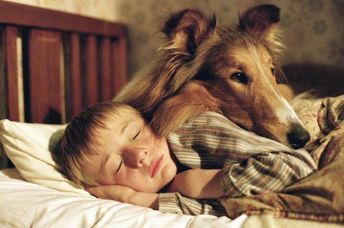 Dormi linistit...sunt cu tine...mereu!