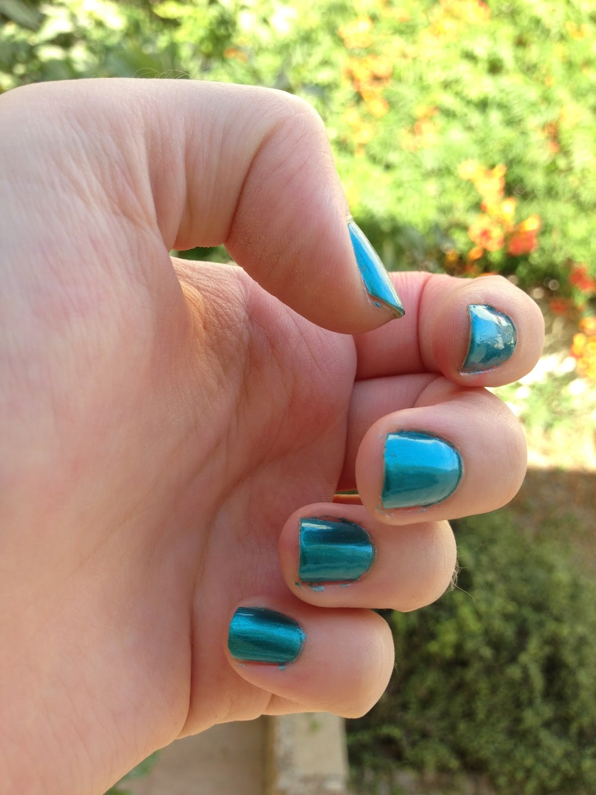 barry m teal
