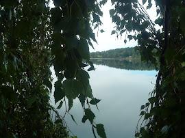 Lindesjön, sommaren 2011