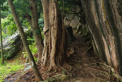 A photograph of the path leading to the Hindagala Temple in Kandy, Sri Lanka