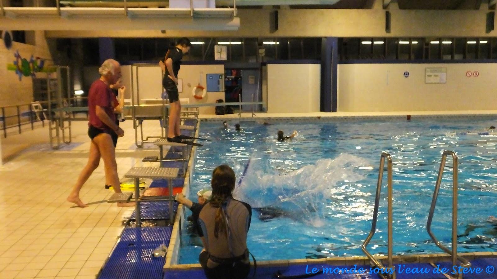 Le monde sous l 39 eau de steve for Palmes pour piscine