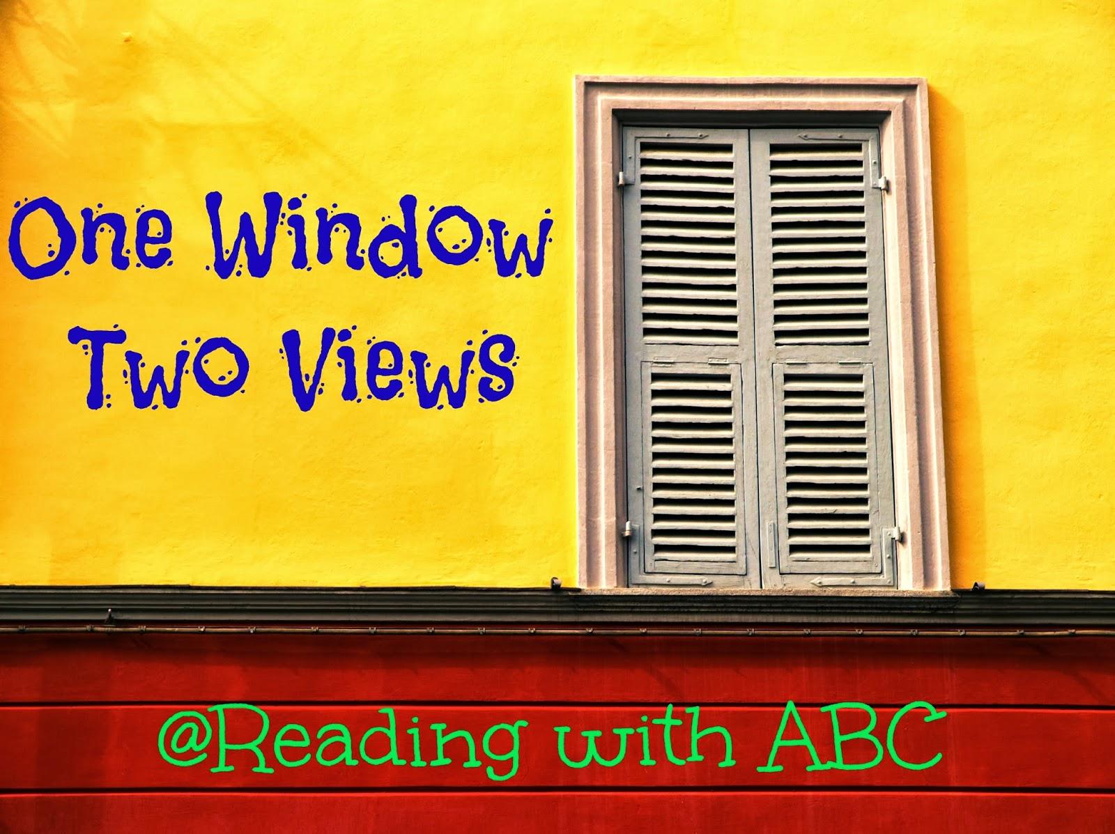 One Window, Two Views {Diversity in YA}