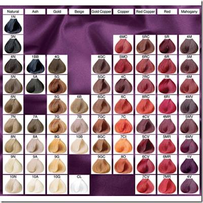 Benefits Professional Hair Colortropical Salon York Garnier