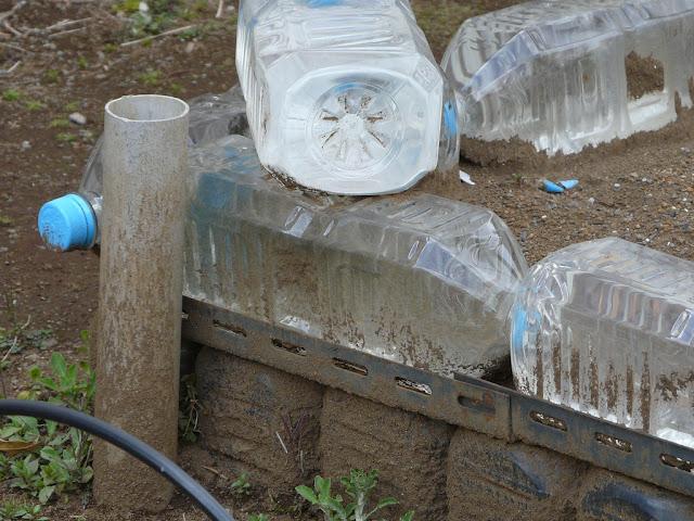 Canteiros feitos com garrafas PET recicladas