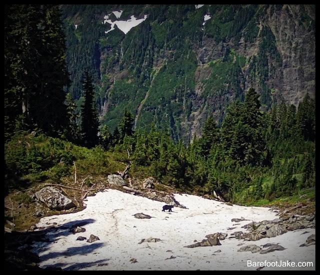 o'neal pass trail