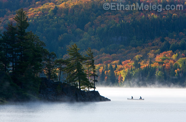 Ethan meleg nature photography blog tips for capturing great photos