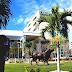University Of South Florida St. Petersburg - Colleges Near St Petersburg Florida