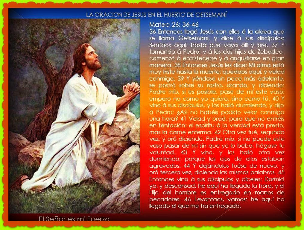 Palabras Cristianas De Aliento Y Pesame