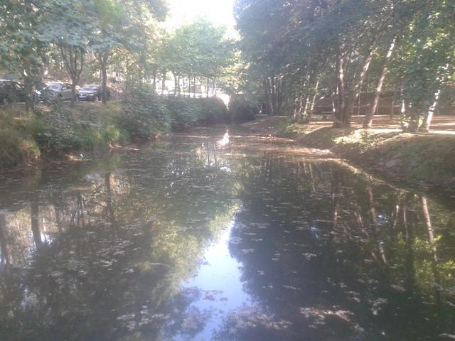 Rio Uima - Zona Fluvial